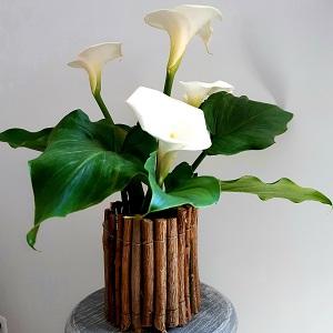 florero-madera-poda