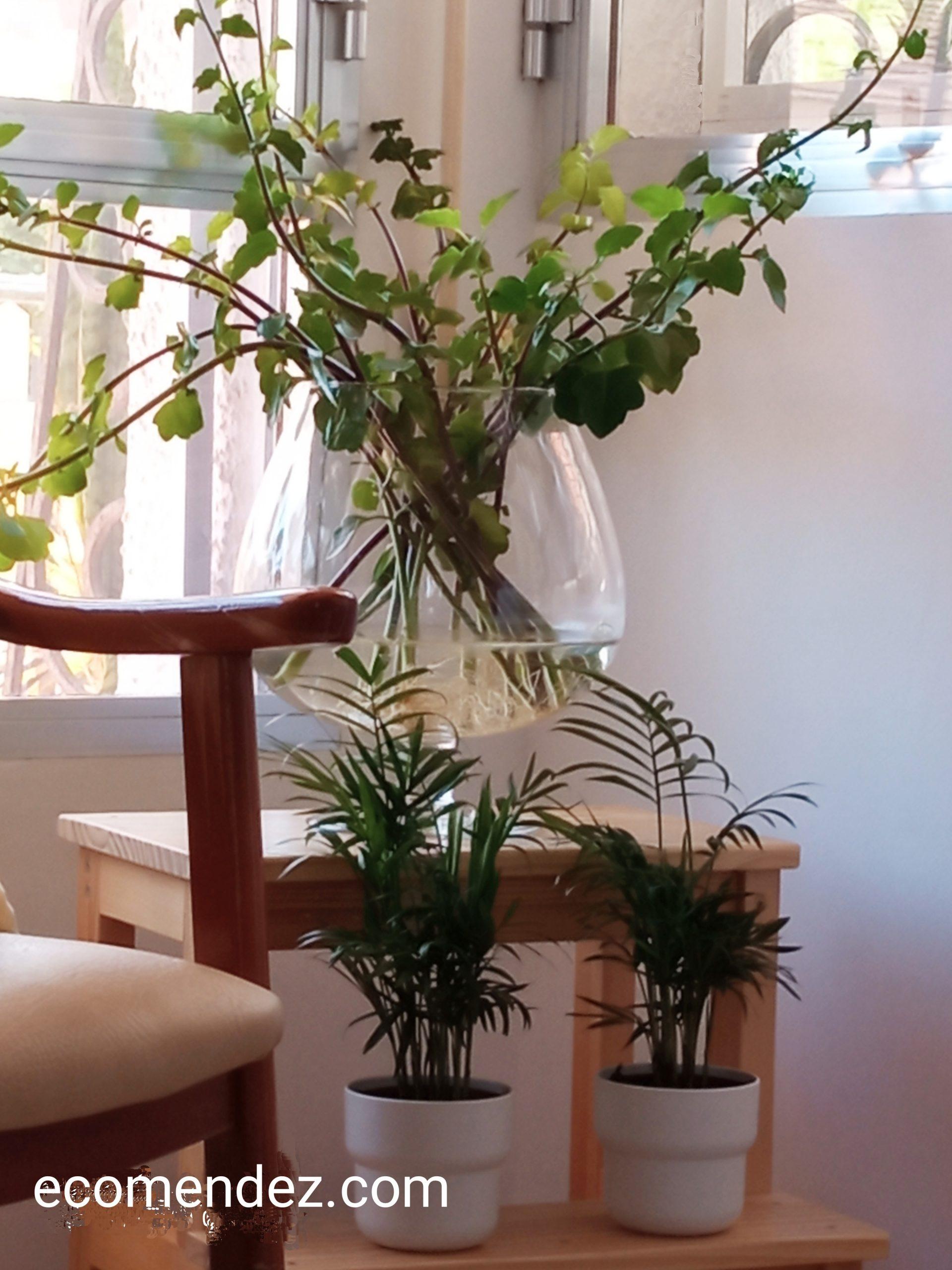 eco-decoración
